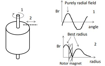 Figure 20: Sketch of the Radial Magnetic Field (Br) Produced by a Rotor